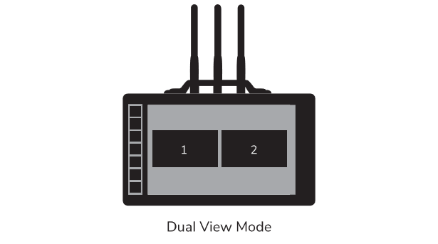 Duel-View